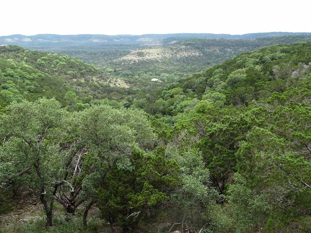 Freemans Cabin 109 Texas Hill Country Reservations