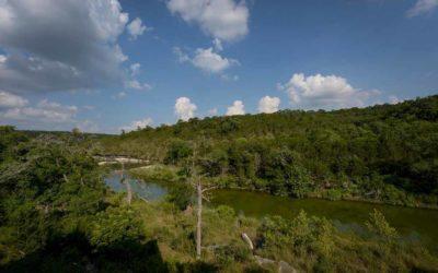 Whimsical Retreat on the Creek